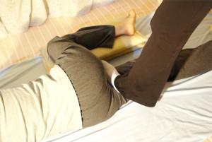 10/下肢内側筋